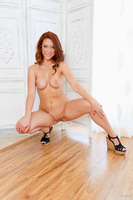 Cute babe Sasha Summers undresses underwear and does blowjob